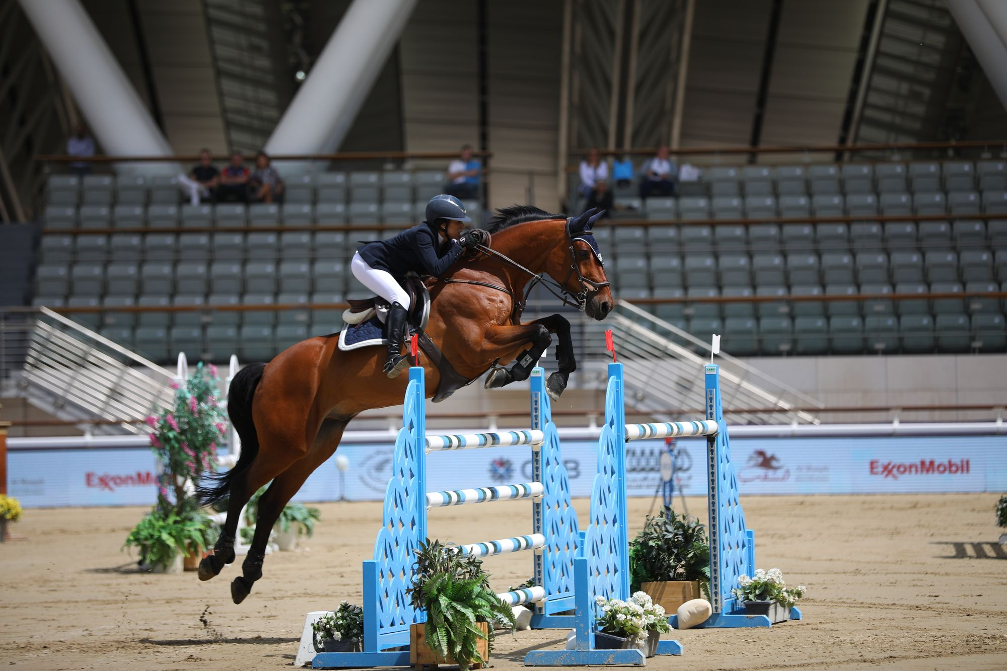 Expat Adventures - Meet a Champion Equestrian - Cyrine Cherif